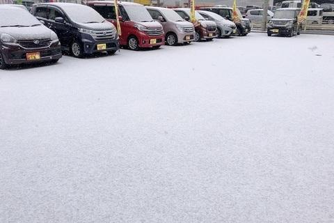 【初売り】雪の展示会