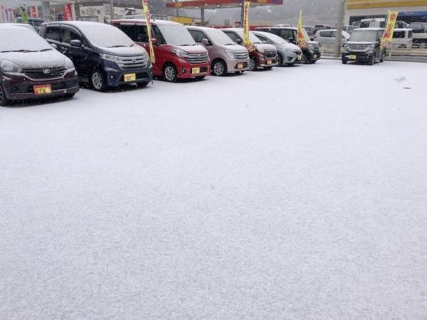【初売り】雪の展示会サムネイル